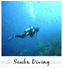 Scuba Diving in Banyuls, France